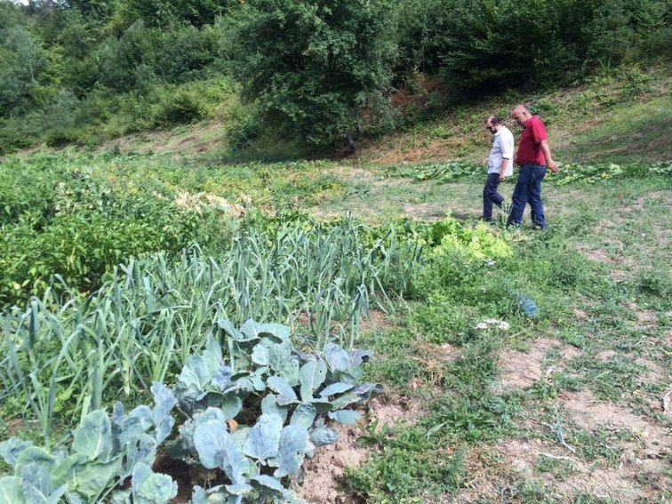 Livelihood security in Kosovo